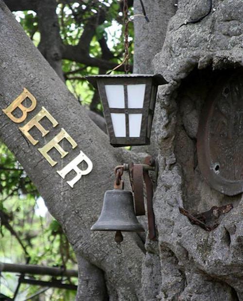 баобаб бар